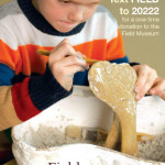 Client Example of Field Museum. Boy sculpting with instructions to text FIELD to 20222 to donate.